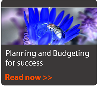 Planning and Budgeting