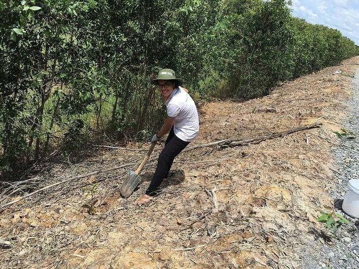 TRG's CSR activities - Tree planting