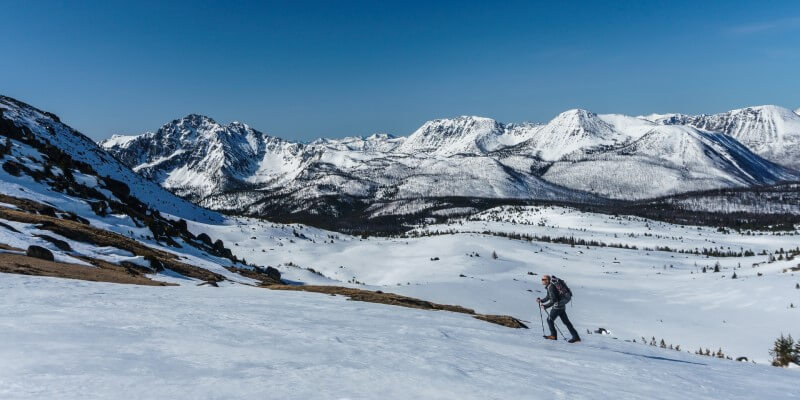 coaching-climb-mountain-move-forward