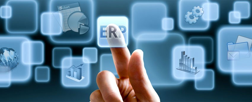 IT strategy: ERP suite or best of breed systems