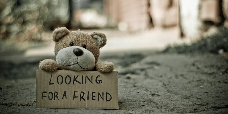 looking-for-a-friend-teddy-bear