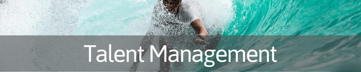 talent-management-free-assessment-2019