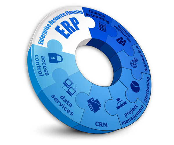 why_we_need_ERP.jpg