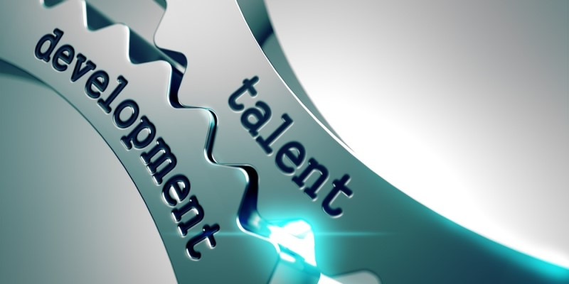 What Should Be Included in Your Employee's Development Plan? (P.3)