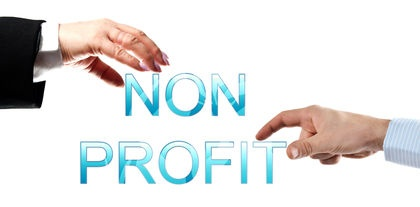 Accounting Software for Nonprofits: a Case Study of Infor SunSystems
